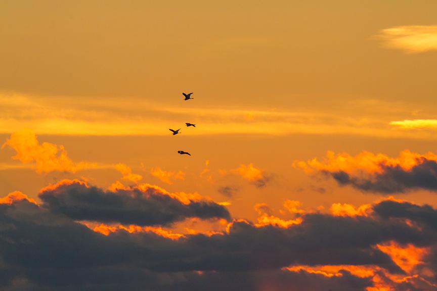 _43G2414 brig HiFlight sunrise v1