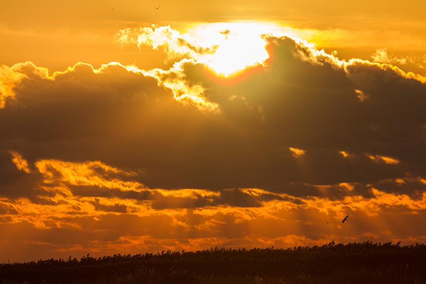 _43G2633 brig sunrise v1