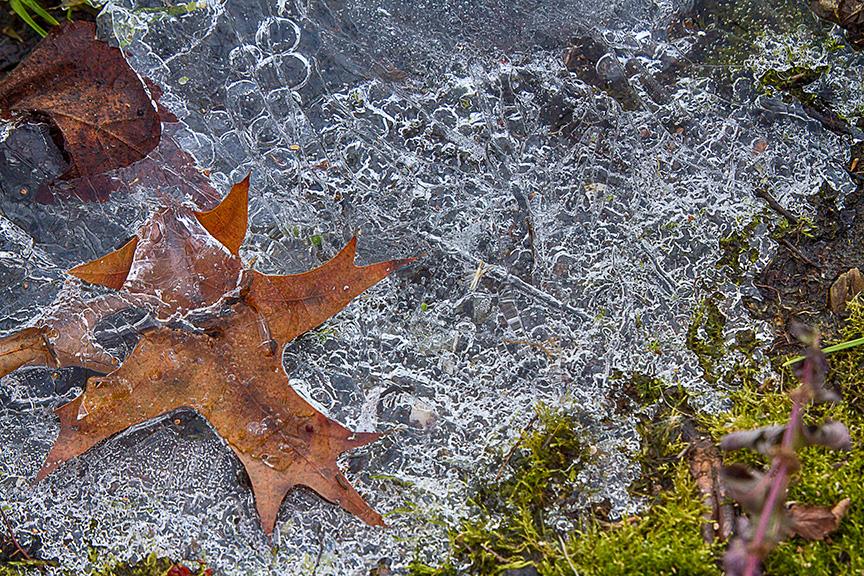 cf ice patterns v2_MG_4355