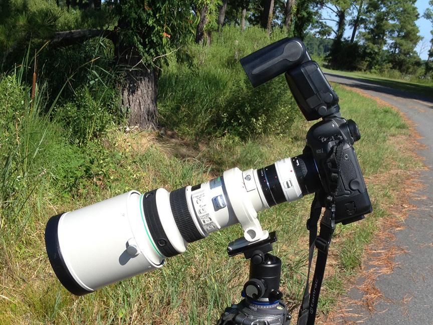 Canon closeup IMG_1245