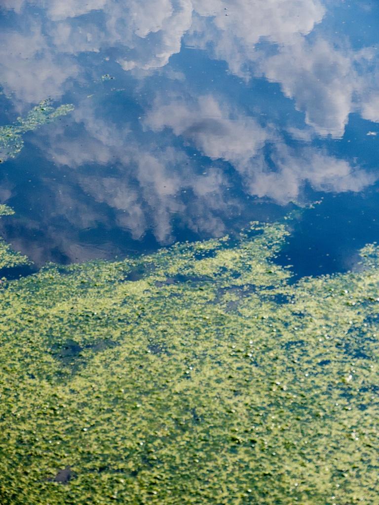 Cloud Water Landscap reflections v1_1350019