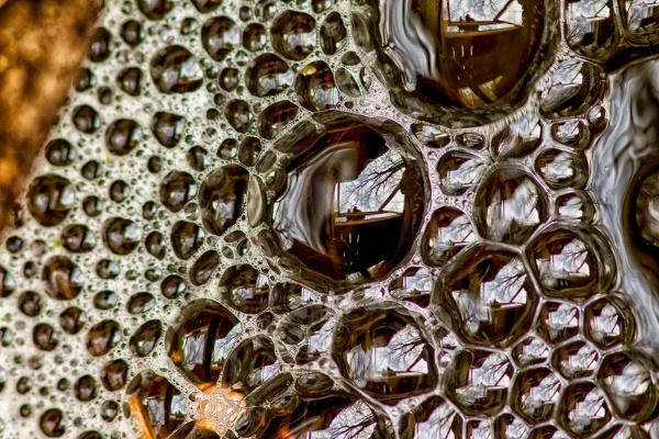 stream bubbles v1 self portrait v1_43G4720