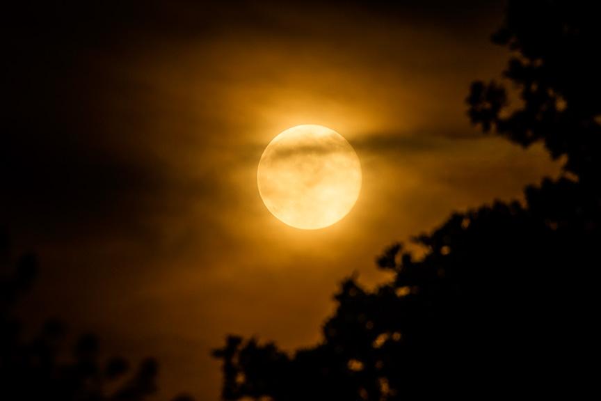 Strawberry moon v1 6 2016_43G1216