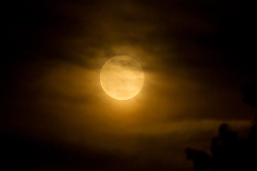 Strawberry moon v1 6 2016_43G1230