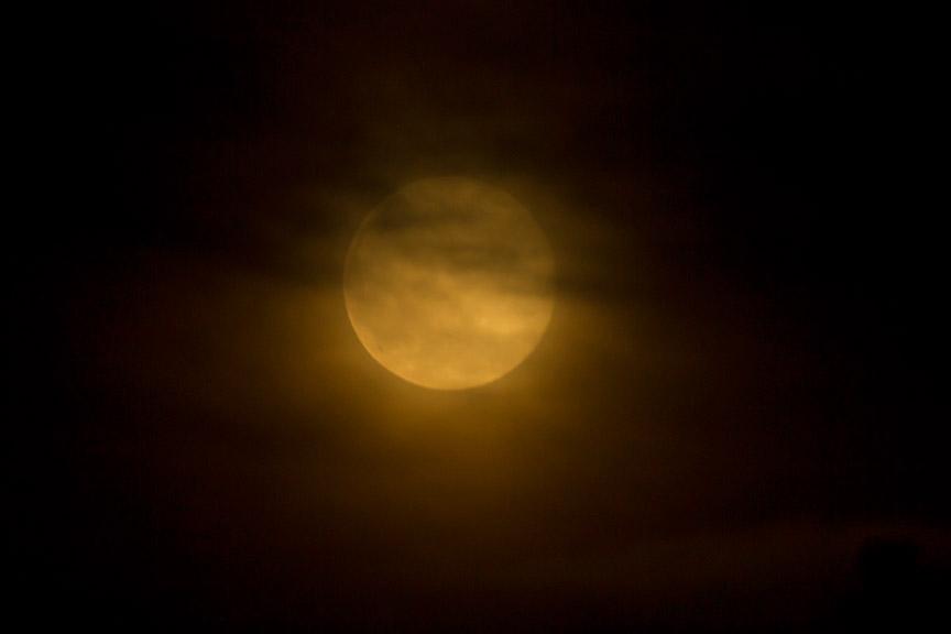 Strawberry moon v1 6 2016_43G1249