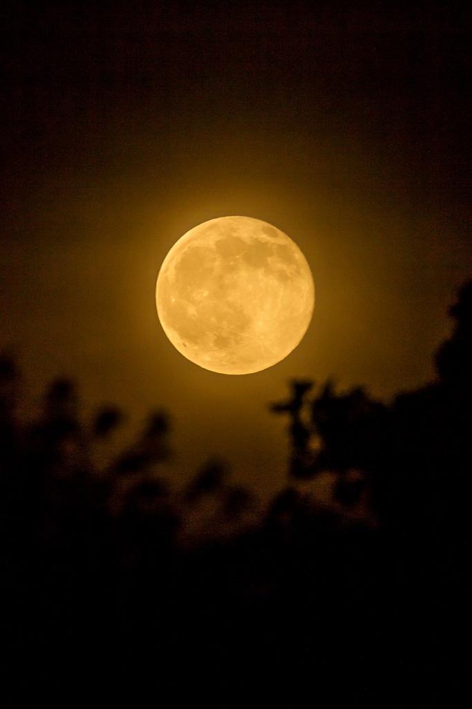 Strawberry moon v2 6 2016_43G1134