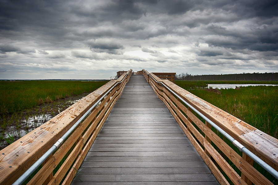 blackwater-observation-platform-24mm_80i9561