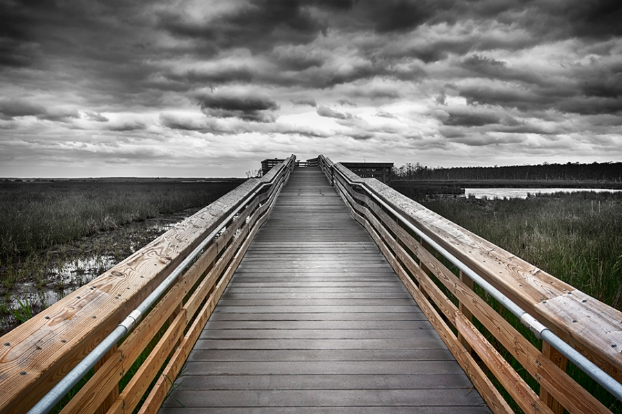 blackwater-observation-platform-24mm_bw-color-blnd-80i9561