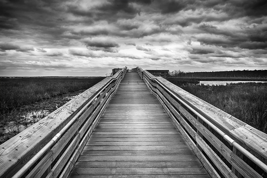 blackwater-observation-platform-24mm_bw-hcon-80i9561