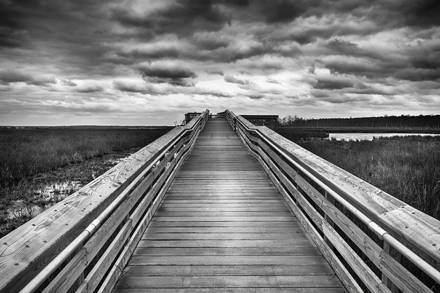 blackwater-observation-platform-24mm_bw-hstruct-80i9561