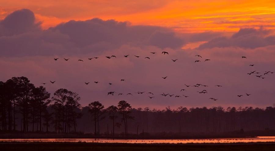 sunset-flyout-v1-bwr_80i7713
