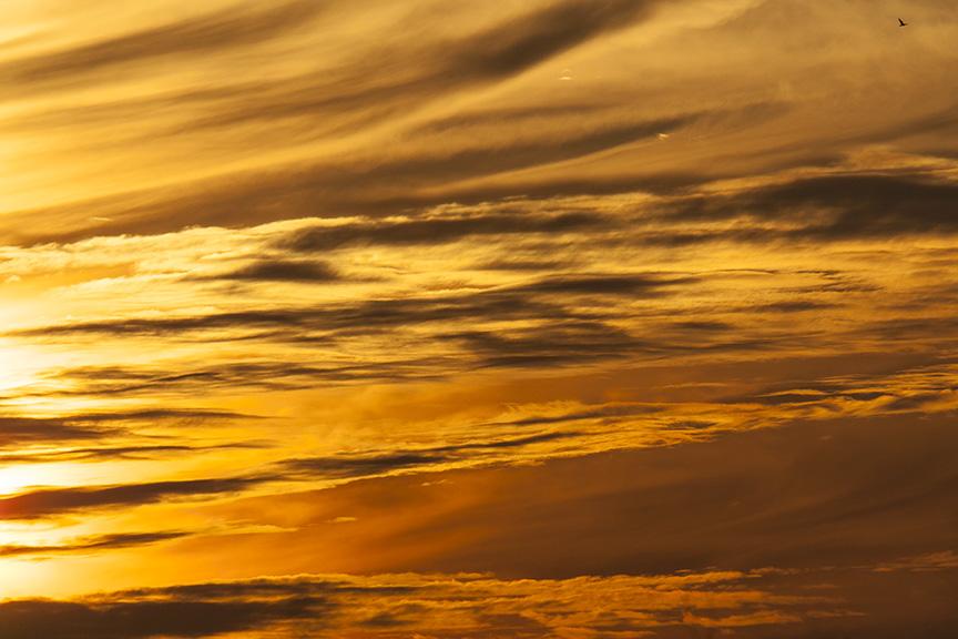 sunset-v1-bwr_80i7576