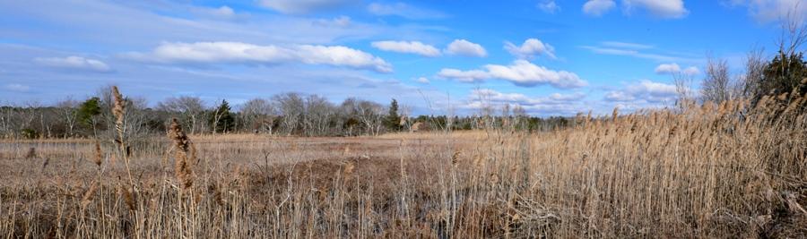brig-landspe-winter-pano-v1-p1060237