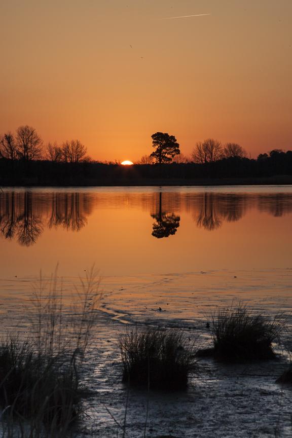 sunrise-bwr-v1_80i5993