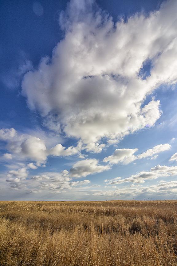 brig-landscape-v2_43g1921
