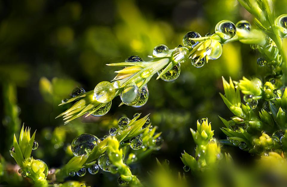 Rain dropstack 3_10img