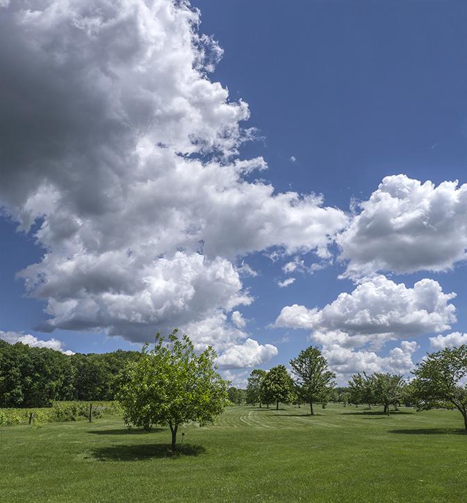 DM 4 sht pano clouds v1