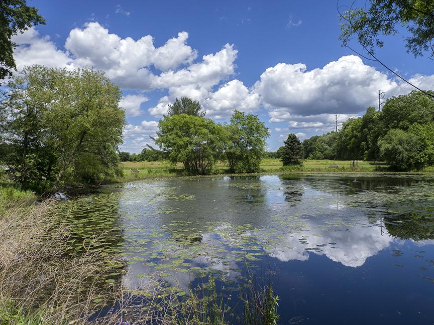 Pond w clouds v1DM 6 17_1410083