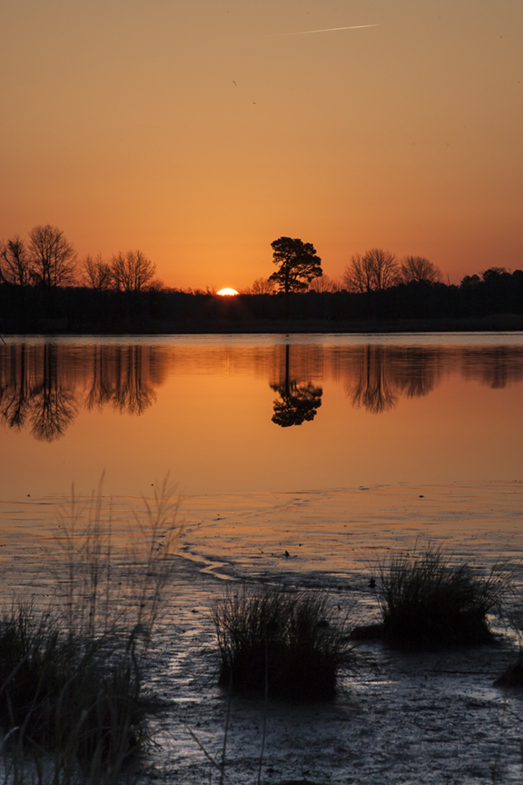 Sunrise BWR v1_80I5993
