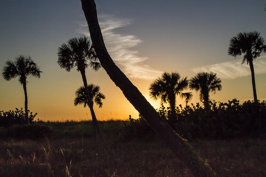 Captiva sunset v1_MG_5445