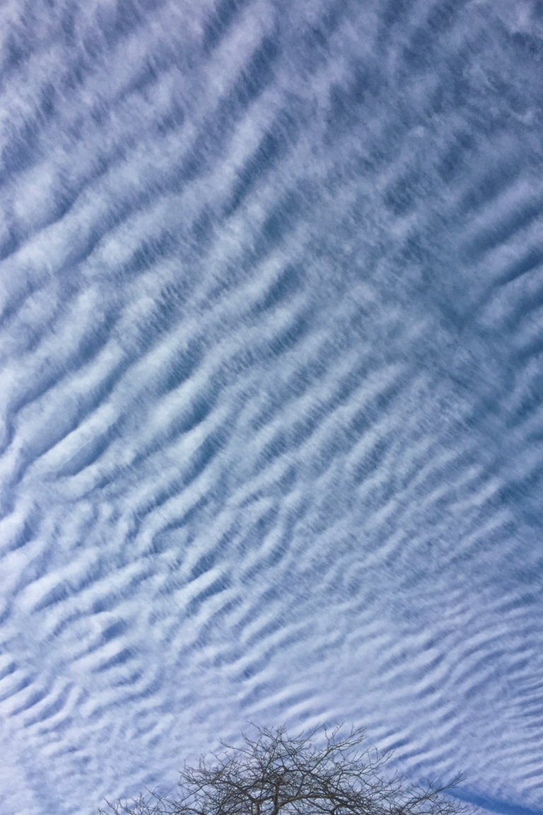 mackeral sky v3