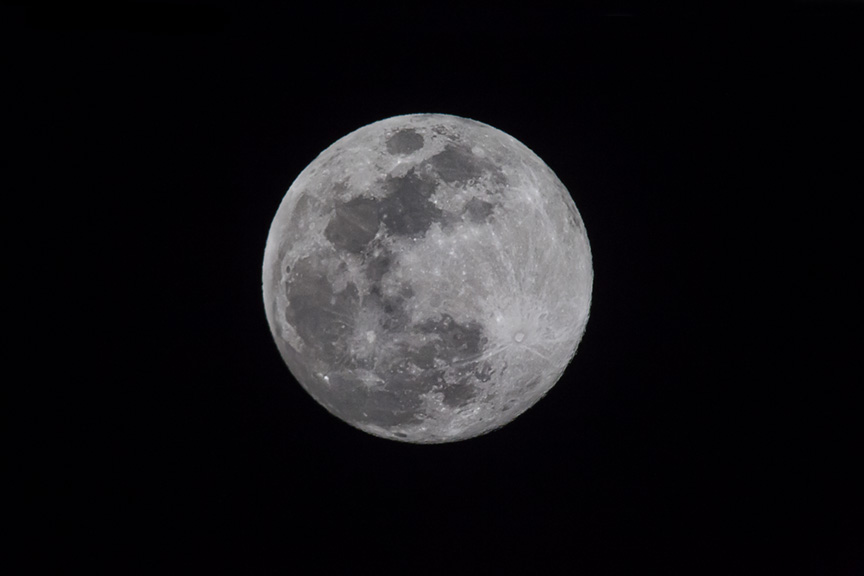 Blue Moon v1_43G4916