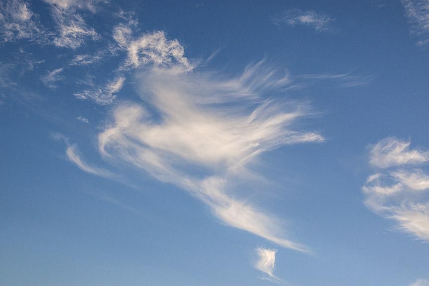 Bird_Clouds v1_80I9568