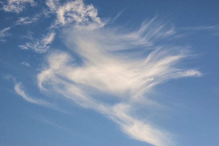 Bird_Clouds v1_80I9571