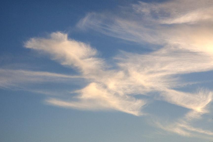 Bird_Clouds v2_80I9575