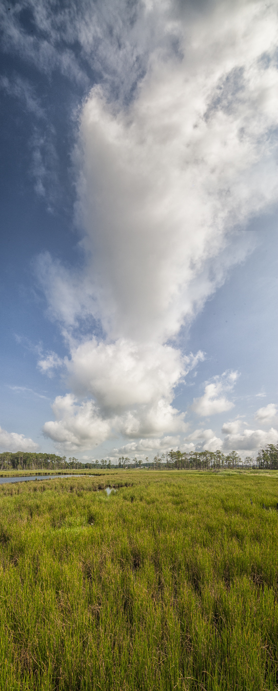 BWR_Cloud_3img_vert_pano_12mm
