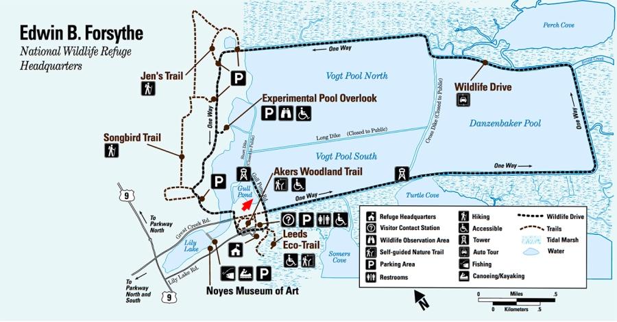 Forsythe NWR Map_Arrow