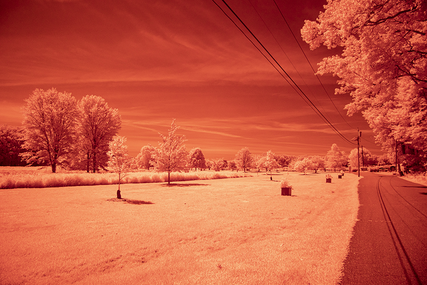 base infrared_v1_76A1528