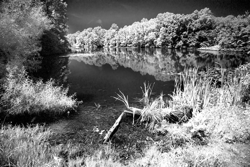 DM Pond v2_2img pano_76A1553