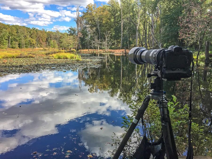 Camera IMG_1034 v3 Beaver Location