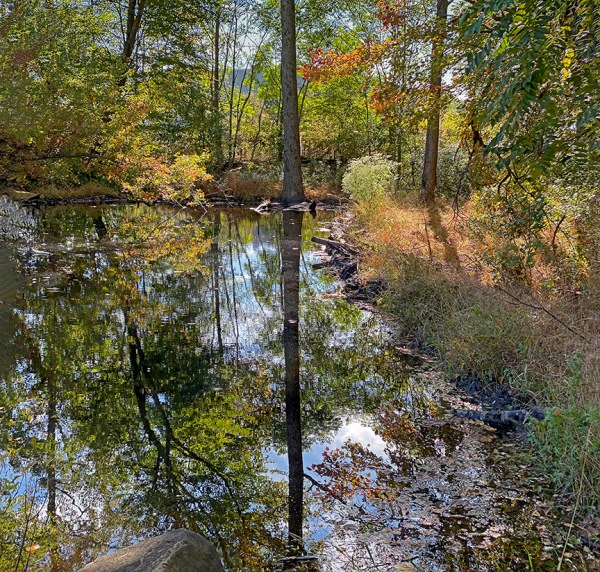 DN_Pond__v4_2img_pano_6mm_ip_52mmFFIMG_0365