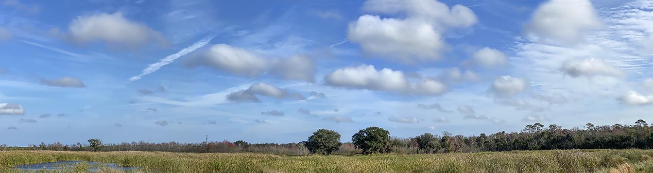 LW_Landscape_v2_IP12_6mm_52mmFF_7img
