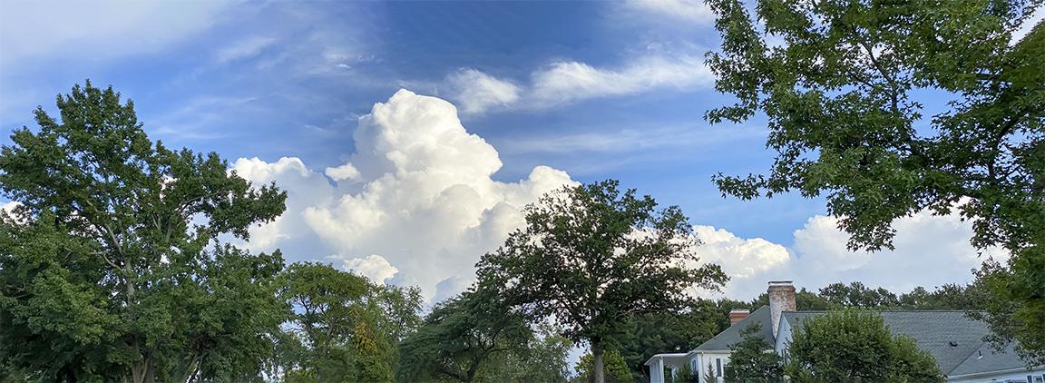 Clouds_#15_6mm_55mm_106 dig zoom